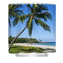 Palms Over Beach II Shower Curtain by Ron Dahlquist - Printscapes