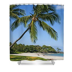 Palms Over Beach Shower Curtain by Ron Dahlquist - Printscapes
