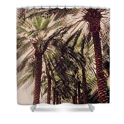 Palmtree Shower Curtain by Jeanette Korab
