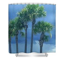 Palmy Skies Shower Curtain by Rachel Hannah