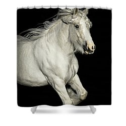 Palomino Portrait Shower Curtain