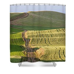 Palouse Backroads Shower Curtain
