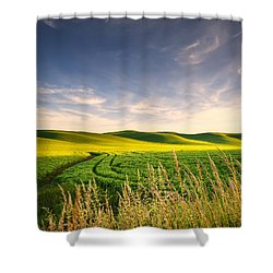 Shower Curtain featuring the photograph Palouse Bounty by Dan Mihai