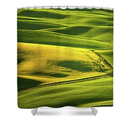 Shower Curtain featuring the photograph Palouse Shades Of Green by Dan Mihai