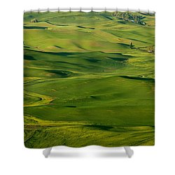 Palouse Spring Shower Curtain by Mike  Dawson