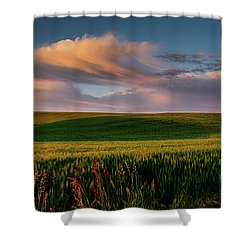 Shower Curtain featuring the photograph Palouse Tree Of Life by Dan Mihai