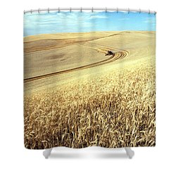 Palouse Wheat Shower Curtain by USDA and Photo Researchers