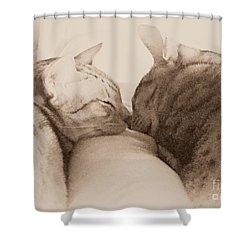 Pals Shower Curtain