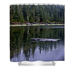 Pamelia Lake Reflection Shower Curtain by Albert Seger