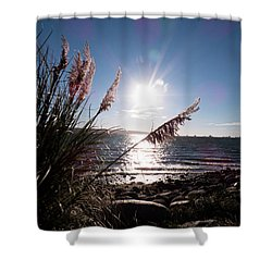 Pampas By The Sea Shower Curtain