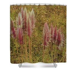 Shower Curtain featuring the photograph Pampas Grass by Athala Carole Bruckner