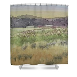 Pampas Grass Shower Curtain by Bethany Lee