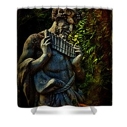 Pan  Shower Curtain