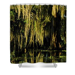Pana Golden Hour Shower Curtain by Kimo Fernandez