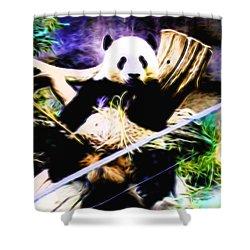 Panda Bear 1 Shower Curtain