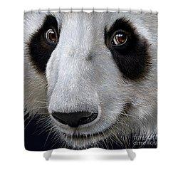 Panda Bear Shower Curtain by Jurek Zamoyski