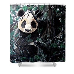 Panda In Tree Shower Curtain