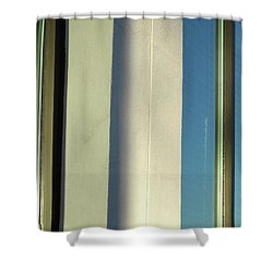 Panglossian Cavalcade Shower Curtain