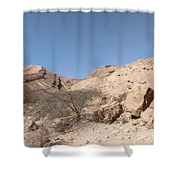 Panorama On Genesis Land 03 Shower Curtain