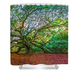 Panoramic Angel Oak Tree Charleston Sc Shower Curtain