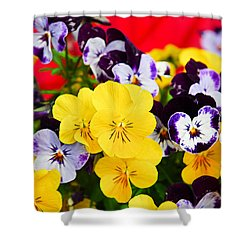 Pansies And Red Cart Shower Curtain