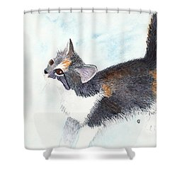 Calico Barn Cat Watercolor Shower Curtain