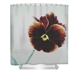 Shower Curtain featuring the photograph Pansy Face by Karen Stahlros