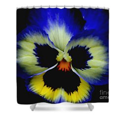 Pansy Face Shower Curtain by Smilin Eyes  Treasures