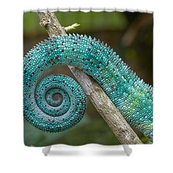 Panther Chameleon Tail Shower Curtain by Philippe Psaila and Photo Researchers