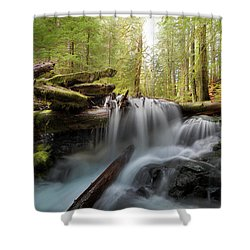 Panther Creek In Gifford Pinchot National Forest Shower Curtain by David Gn