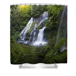 Panther Falls Shower Curtain