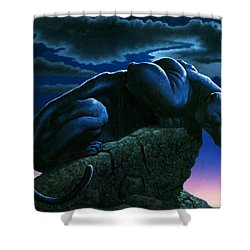 Panther On Rock Shower Curtain by MGL Studio - Chris Hiett