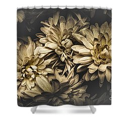 Shower Curtain featuring the photograph Paper Flowers by Jorgo Photography - Wall Art Gallery