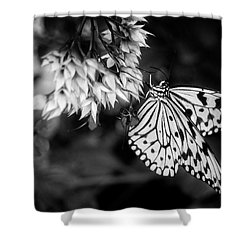 Paper Kite In Black And White Shower Curtain