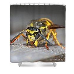 Paper Maker Shower Curtain