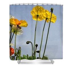 Paper Poppies Shower Curtain