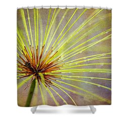 Papyrus Shower Curtain
