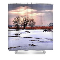 Par For Winter's Course Shower Curtain by Diana Angstadt
