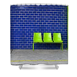 Paradaxochi Shower Curtain by Skip Hunt