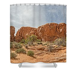 Shower Curtain featuring the photograph Parade Of Elephants by Sue Smith