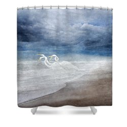 Paradise Dreamland  Shower Curtain