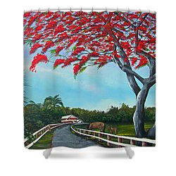Paraiso Shower Curtain