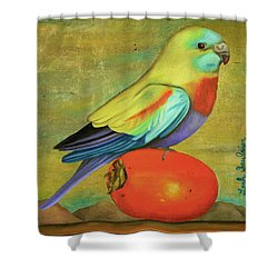 Parakeet On A Persimmon Shower Curtain by Leah Saulnier The Painting Maniac