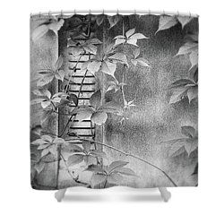Parallel Botany #0810 Shower Curtain