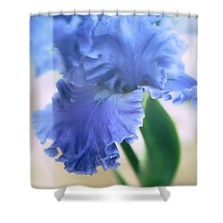 Parallel Botany #5254 Shower Curtain by Andrey Godyaykin