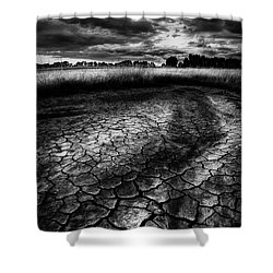 Parched Prairie Shower Curtain by Dan Jurak