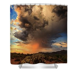 Shower Curtain featuring the photograph Parched by Rick Furmanek