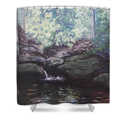 Paris Mountain Waterfall Shower Curtain