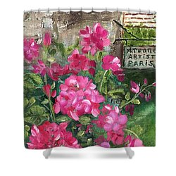 Paris, Wisconsin Shower Curtain