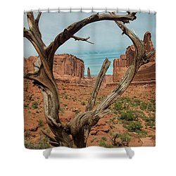 Shower Curtain featuring the photograph Park Avenue by Gary Lengyel